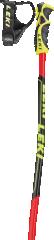 Leki Worldcup Racing GS TBS